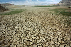 The drought. Comes at a difficult moment Royalty Free Stock Photo