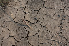 Drought conditions. Prevail on the prairies Royalty Free Stock Photo