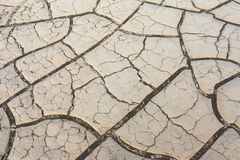 Drought. Cracked and barren soil during a drought Stock Images