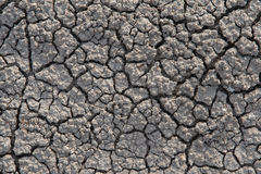Drought Cracked Dirt Royalty Free Stock Photography