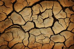 Drought Stock Photography
