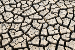Drought cracked earth Stock Image