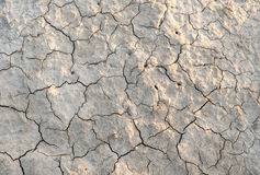 Drought Stock Images
