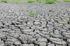 Drought cracked earth Stock Photography