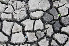 Drought cracked earth Stock Photos