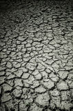 Drought Cracked Ground Stock Image