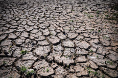 Drought Cracked Ground Stock Images