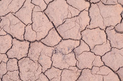 Drought cracked soil Stock Photo