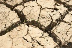 Drought cracks Royalty Free Stock Photo