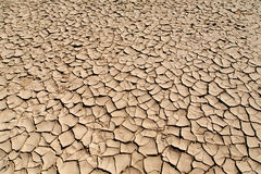 Drought and Desertification Royalty Free Stock Photos