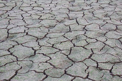 Drought disaster Royalty Free Stock Photography