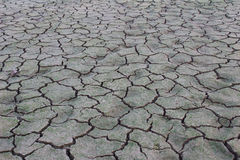 Drought disaster Royalty Free Stock Image