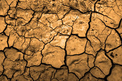 Drought Dried Dirt Royalty Free Stock Image