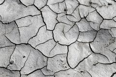 Drought and a dried out landscape royalty free stock images