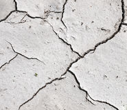 Drought - dry river bed detail Royalty Free Stock Image