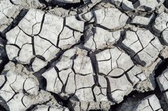 Drought earth as background Stock Photo