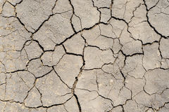 Drought earth as textured background Stock Photo
