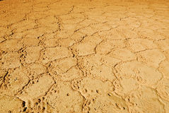 Drought, earth background Royalty Free Stock Images