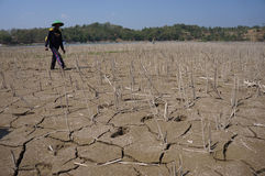 Drought. Farmers walked through dry farmlands due to drought in Boyolali, Central Java, Indonesia stock images