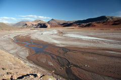 Drought feature land. With last puddles of water and beautiful geological feature in background. Isla de Pescado. Salar Uyuni. Bolivia Stock Image