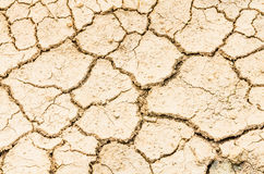 Drought field Stock Photography