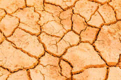 Drought field Royalty Free Stock Photo