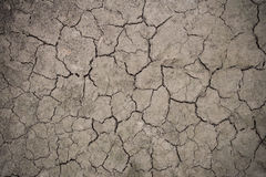 Drought floor Stock Images