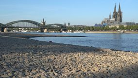 Drought in Germany, low water on Rhine river stock video footage