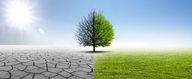Drought and Green Nature royalty free stock images