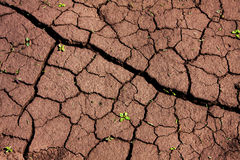 Drought ground Stock Image