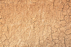 Drought, the ground cracks Stock Image