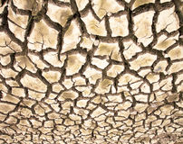 Drought the ground cracks Royalty Free Stock Photo