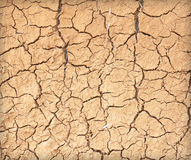 Drought the ground cracks Stock Photography