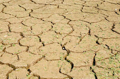 Drought, the ground cracks, no hot water, lack of moisture. Stock Images