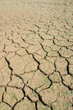 Drought, the ground cracks, no hot water, lack of moisture. Royalty Free Stock Photos