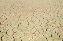 Drought, the ground cracks, no hot water, lack of moisture. Stock Photos