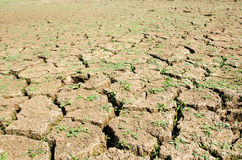 Drought, the ground cracks, no hot water, lack of moisture Royalty Free Stock Photo