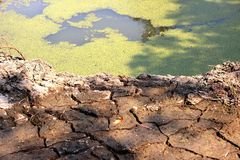 Drought, Global warming, ground isolation and low water level in irrigation pond stock photos
