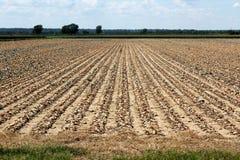 Drought In The Heartland. A Drought In The Heartland Stock Photos