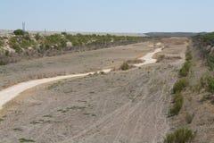 Free Drought In Texas Stock Photos - 27593233
