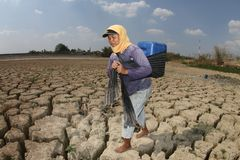 Drought in indonesia royalty free stock images