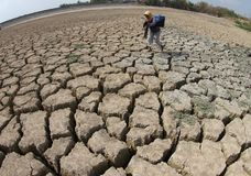 Drought in indonesia Royalty Free Stock Image