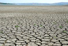 Drought lake bed - global warming. Drought human and global warming Stock Photos