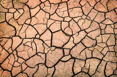 Drought Land. Closeup of a piece of drought land Royalty Free Stock Photo