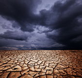 Drought land Stock Photography
