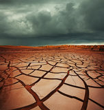Drought land. In Gobi desrt,Mongolia stock photography