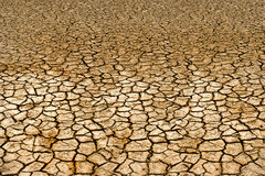 Drought land. Fuerteventura .Canary island royalty free stock photo