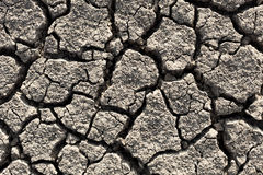 Drought land. Drought and cracked land detail royalty free stock images