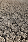 Drought land. Drought and cracked land background stock image
