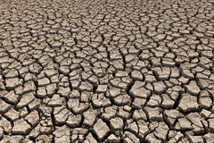 Drought land. Detail and background royalty free stock photos